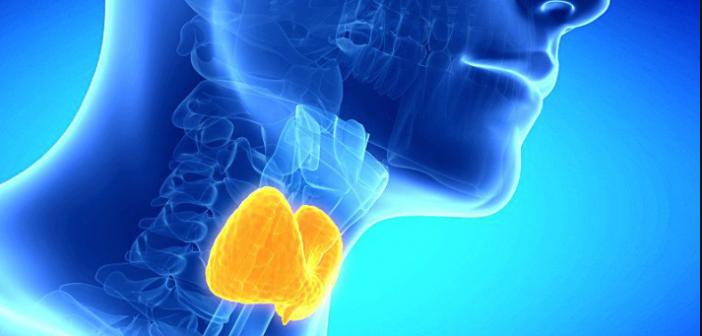 ¿Como se trata el hipotiroidismo?